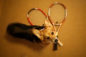 S20090130_racket_003