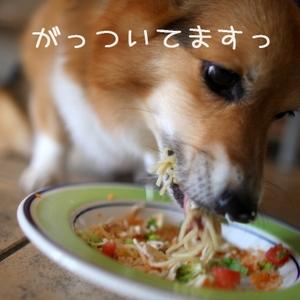 Ssengokubara_078