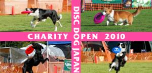 Charity2010