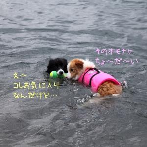 Asagiri_0301m