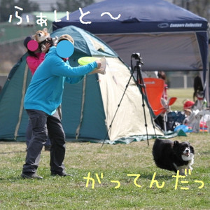 M2012_1st_beginner_11_039