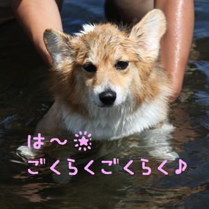 Mmotosu_0109