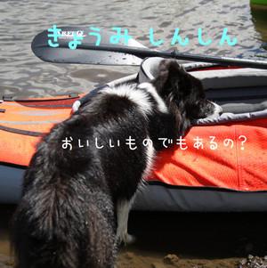 Mmotosu_0747