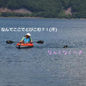 Mmotosu_1040