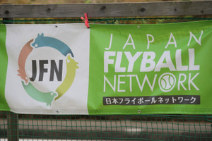 Ms_flyball_0881