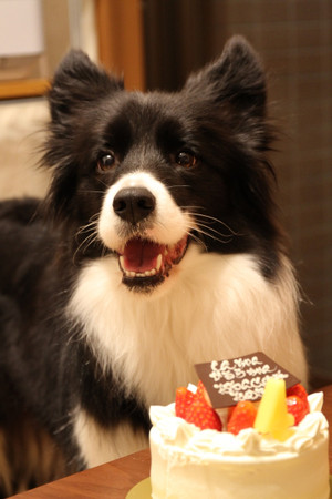 Birthday_045_2