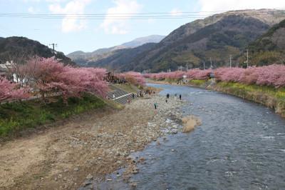Kawadu_0220