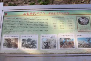 Jindai_0193