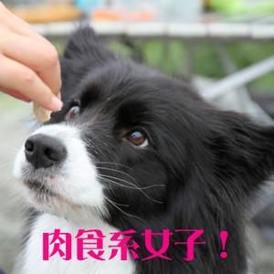 Mnakatsu_0288