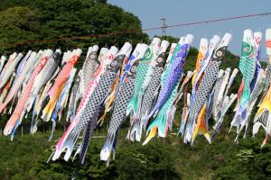 Sagami_0113