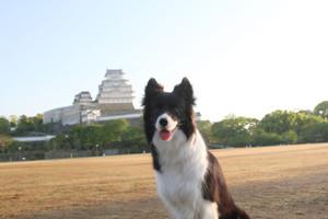 Himeji_0019
