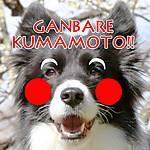 Ganbarekumamoto_karura