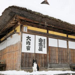 Ouchijyuku_0037