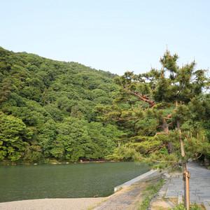 Arashiyama_0171