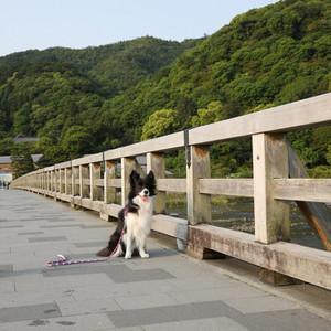 Arashiyama_0185
